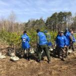 Акция ЕР «Сохраним леса Приморья» началась с коррекционных школ
