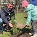 Убираем всем двором: В Мещанском районе единороссы организовали экосубботник