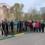 На территории первой городской больницы в Саратове появилась «Аллея поколений»