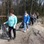 Егорьевские единороссы и молодогвардейцы убрали мусор в лесном массиве у Княжеского пруда