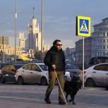 Госдума в первом чтении смягчила требования к собакам-поводырям