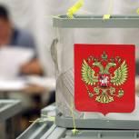 В объединенном Пушкинском городском округе закрылись избирательные участки