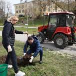 Члены фракции «Единой России» в Рязанской городской Думе высадили деревья на Лыбедском бульваре