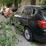Кто ответит за имущество граждан, поврежденное от сваленных ветром деревьев и сорванных конструкций? Разъясняет Александр Козлов
