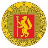 В Свердловской области появится новая награда - «За заслуги в волонтерской деятельности»