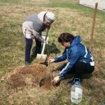 В Рогнединском районе прошла акция акции «Сад Памяти»