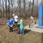 Рязанские единороссы вместе с волонтерами благоустраивают памятные места