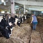 Сельхозпроизводители Ивановского района получат грантовую поддержку для технического перевооружения производства