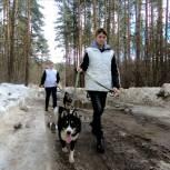 Костромские и нерехтские молодогвардейцы помогли бездомным животным