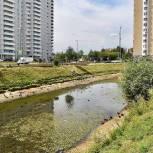 Тарас Ефимов и Вячеслав Фомичев обсудили с жителями микрорайона Железнодорожный планы по благоустройству пруда Коровка
