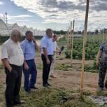Владимир Шапкин посетил «Ягодную долину» в Щелковском округе