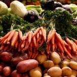 В регионе продажа овощей организована на ярмарочных площадках