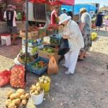 Активисты Яшкульского местного отделения партии провели мониторинг цен на сезонные овощи