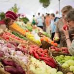 «Борщевой набор» стал доступнее: в регионах работают меры по снижению цен