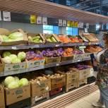 Июльские показатели цен на сезонные овощи в августе стали ниже