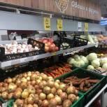 В регионе продолжается мониторинг стоимости сезонных овощей