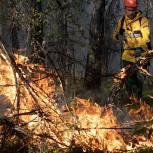 Активисты единого волонтерского штаба помогут в восстановлении жилья и лесов в Якутии после пожаров