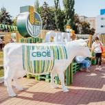 В Курске состоялся фермерский фестиваль «Своё»