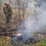 Первоуральские активисты помогают в борьбе с лесными пожарами
