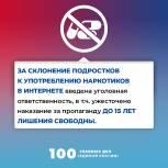 100 главных дел «Единой России». За склонение подростков к употреблению наркотиков в интернете введена уголовная ответственность