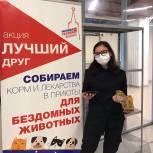 Акция «Лучший друг»: собранные корм и лекарственные препараты молодогвардейцы Москвы передадут в приют для бездомных животных в районе Печатники