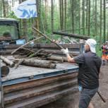 В Новой Трехгорке партийцы очистили береговую линию прудов