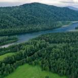 «Единая Россия»: Меры по охране лесов от пожаров будут усилены