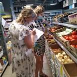 В Кореневском районе единороссы ведут мониторинг цен на овощи и продукты первой необходимости
