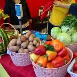 Ярмарки выходного дня по реализации сельскохозяйственной продукции продолжают свою работу