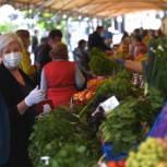 Новые ярмарки и торговля без посредников: как в регионах работают меры по снижению цен на овощи, предложенные депутатами «Единой России»
