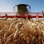 Депутаты «Единой России» предлагают законодательно закрепить льготы для фермеров на строительство оптово-распределительных центров