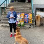 В Магадане при поддержке сторонников «Единой России» прошла благотворительная акция «Лучший друг»