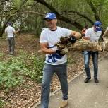 Сотни добровольцев приняли участие в экосубботниках