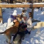 Татьяна Богомолова взяла на контроль проблемы городских приютов для животных