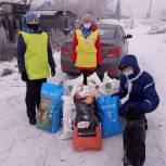 Кузбасские единороссы привезли в приют для собак более 120 килограммов корма