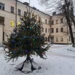 Рязанские единороссы украшают елки у больниц и поликлиник