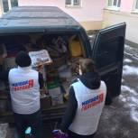 Молодогвардейцы Нижнего Тагила поделились опытом участия в экологических проектах