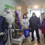В Старожиловском районе единороссы поздравили жителей всех возрастов