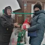 Депутаты сельских поселений включились в работу волонтерских центров «Единой России»