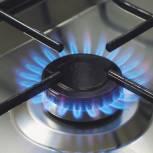 «Единая Россия» предложила законодательно закрепить создание единого регионального оператора газификации