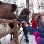 """Отправились в """"Сказку"""": ребята из центра социальной помощи  «Ты не одна» побывали в контактном зоопарке"""