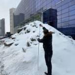 Партпроект «Народный контроль» провёл мониторинг качества уборки и вывоза снега в Перми