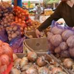 Минсельхоз направил в регионы обращение о необходимости развивать нестационарную торговлю овощами