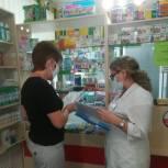 Пензенские единороссы провели мониторинг цен на лекарства