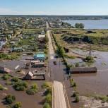 Молодогвардейцы Свердловской области объявили о сборе гуманитарной помощи