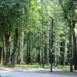 В Центральном парке культуры и отдыха в Рязани установили новое освещение