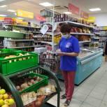 В Большесолдатском районе единороссы провели мониторинг цен на продукты «борщевого набора»