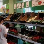 Волонтеры проверили цены на продукты «борщевого набора» в Туле