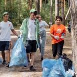 Подмосковная «Молодая Гвардия» в городском округе Орехово-Зуево провела двухдневный экокемпинг