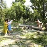 Безопасный двор появился в школе №1 в Тогучине